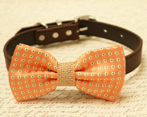 Peach dog bow tie attached to collar, Pet Wedding, Dog lovers