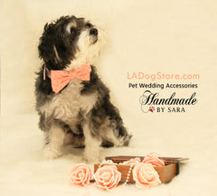 Peach dog bow tie collar, Bow attaches to brown, Ivory, pink, Black or White collar, dog lovers, peach wedding accessory, dog birthday gift - LA Dog Store  - 1