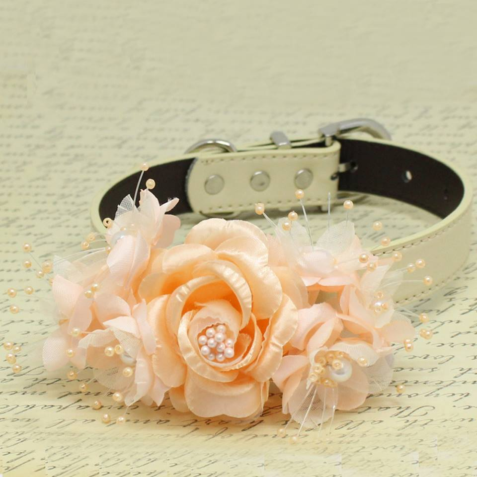 Peach Flowers Dog Collar Pet Wedding Pearls Puppy Lovers
