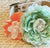 Peach Peonies and Mint Floral Dog Collar Pet Wedding, Floral Collar