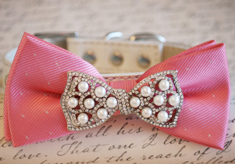 Blush Dog Bow Tie, Pink lovers, Pet accessory, Pink wedding idea, Dog Birthday accessory