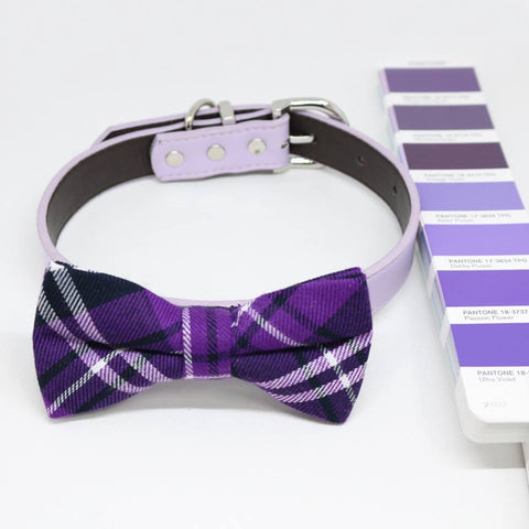 Ultra Violet dog bow tie collar, Color of the Year PANTONE 18-3838, Pet wedding, Gifts , Wedding dog collar