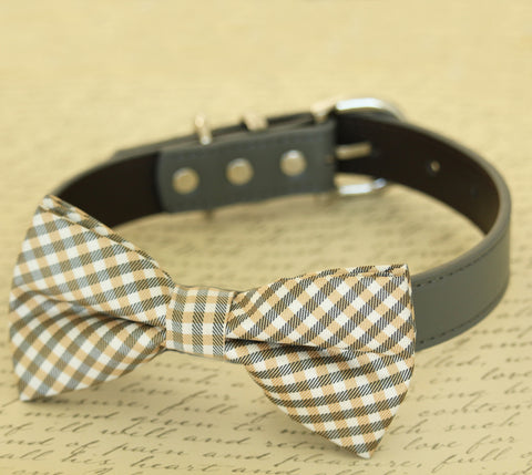 Champagne dog bow tie attached to collar, Pet wedding accessory
