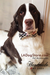 Plaid Burly wood bow tie Dog Bow Tie attached to dog collar, Dog Bow tie, Dog birthday gift - LA Dog Store  - 1