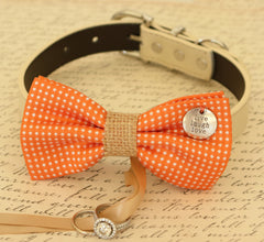 Orange Dog Bow Tie,Bow attached to dog collar, Dog ring bearer, Pet Wedding accessory, Proposal, Live Love Laugh, Polka dots bow, Dog lovers - LA Dog Store  - 1