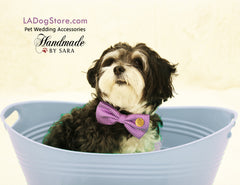 Purple Dog Bow Tie collar, Pet wedding accessory, Purple wedding, dog birthday gift, Live Love Laugh, Dog lovers, puppy, dog collar - LA Dog Store  - 1