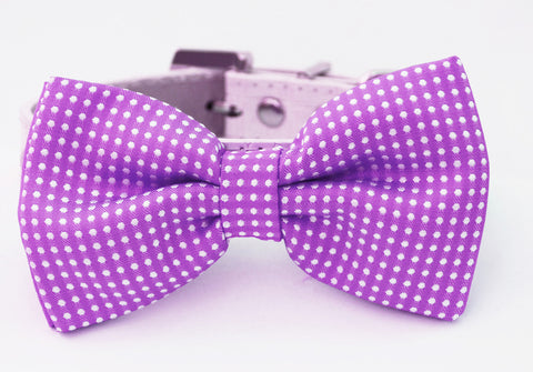 Dark Orchid Dog Bow Tie, Wedding Dog Collar, Birthday, Holiday, Orchid wedding
