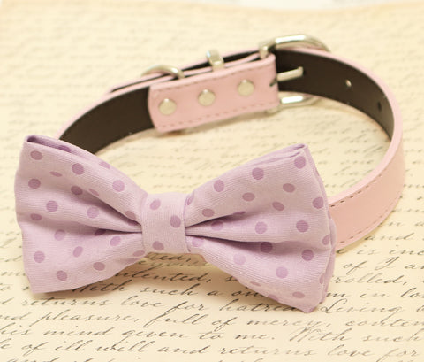 Purple Dog Bow Tie attached to collar, Pet wedding accessory , Wedding dog collar