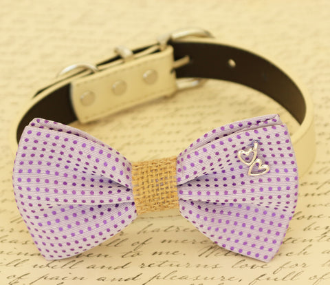 Purple dog bow tie, Bow tie attached to dog collar, Pet wedding accessory