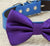 Purple dog Bow tie, Blue and Purple dog bow tie, pet wedding accessory, dog lovers, dog birthday git, some thing blue, wedding accessory - LA Dog Store  - 2