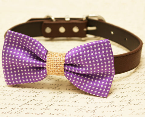 Purple Dog Bow Tie attached to collar, Country Rustic wedding, Burlap , Wedding dog collar