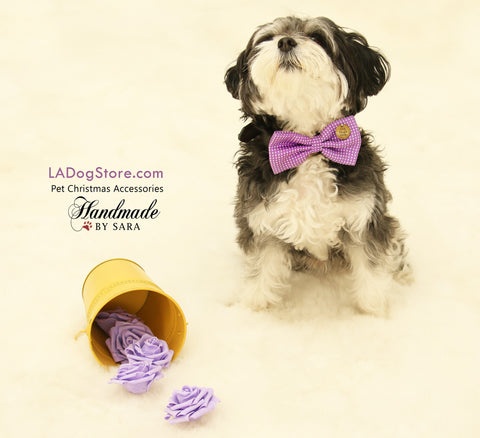 Purple Dog Bow Tie attached to collar, dog birthday, Purple wedding, Charm , Wedding dog collar