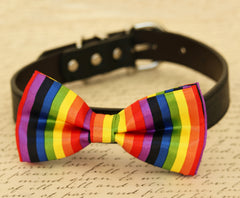 Rainbow dog bow tie, Bow attached to dog collar, Colorful bow tie, Dog collar, dog lovers, Rainbow, pet accessory, Gift - LA Dog Store  - 1