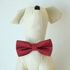 Micheys Red Polka dots bow, Small bow tie collar, Puppy Collar, Cat collar, Cat bow tie collar, Leather, Handmade, Cat bow, XS Collar,