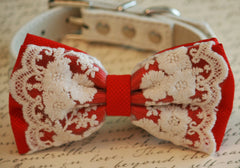 Red Dog Bow Tie, Lace Bow tie, Vintage Wedding, Pet wedding accessory, Vintage wedding idea, Dog Wedding accessory, Victorian wedding - LA Dog Store  - 2