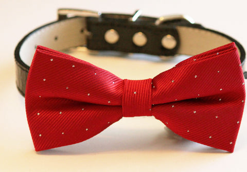 Red Ruby Dog Bow Tie with collar- Chic Wedding dog bow tie, Birthday gift