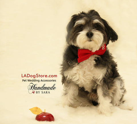 Red Dog Bow tie attached to dog collar, heart charm , Wedding dog collar