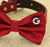 Red Dog Bow tie collar, Initial, Pet accessory