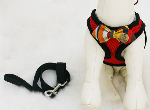 Red Dog Harness with colorful bow and a black leash, colorful bow with a charm
