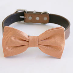 Rose gold bow tie collar dog of honor dog ring bearer XS to XXL collar and bow tie, adjustable Puppy bow tie handmade boy dog collar
