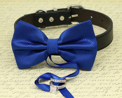 Royal Blue Dog Bow Tie, Dog ring bearer, Pet Wedding accessory, Pet lovers, Royal Blue bow attached to black dog collar