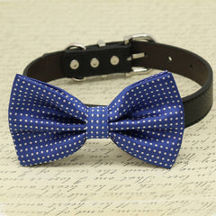 Royal Blue Dog Bow collar, Pet wedding accessory, Polka Dots, Something blue , Wedding dog collar