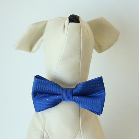 Amparo Blue Polka dots bow, Small bow tie collar, Puppy Collar, Cat collar, Cat bow tie collar , Wedding dog collar