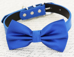 Royal blue dog Bow tie,Bow attached to blue dog collar, pet wedding accessory, birthday gift, some thing blue, dog accessory, Beach wedding - LA Dog Store  - 1
