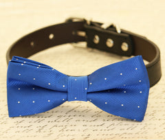 Royal Blue dog bow tie collar-Bow attached to dog collar, Some thing blue, Pet wedding accessory, Dog lovers, Dog collar - LA Dog Store  - 1