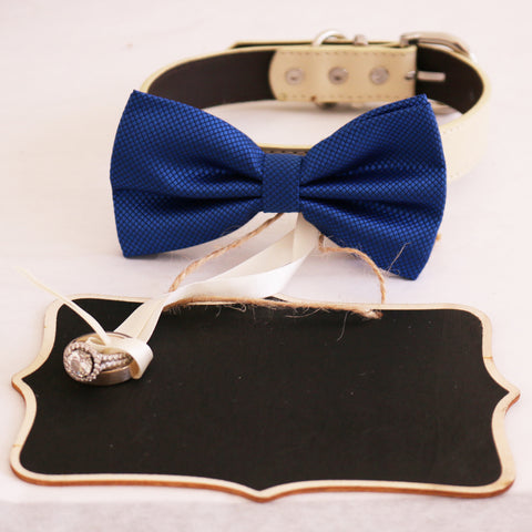 Royal blue  bow tie collar and Small Chalkboards Signs, Proposal, Bridal Sign, Dog Ring Bearer, Marry me, XS to XXL collar , Wedding dog collar