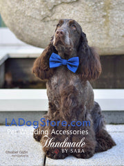 Royal Blue Dog Bow tie with brown High Quality Leather Collar, Chic Dog Bow tie, Wedding Dog Accessories - LA Dog Store  - 1