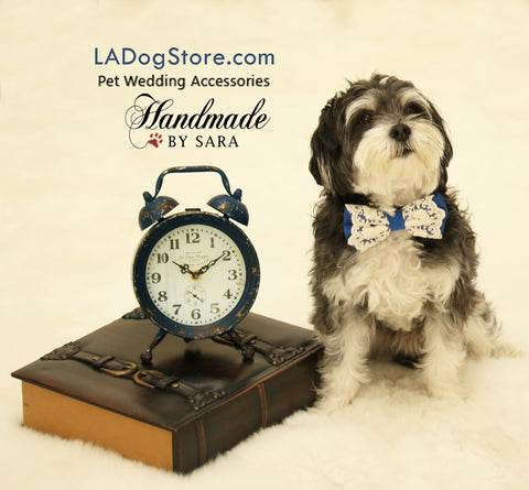 Royal Blue Lace Dog Bow Tie collar, Pet wedding