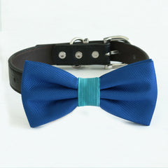 Royal blue turquoise bow tie collar, handmade Puppy bow tie, XS to XXL collar and bow adjustable dog of honor ring bearer, Royal blue turquoise bow tie