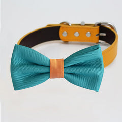Teal blue Orange bow tie collar, handmade Puppy bow tie, XS to XXL collar and bow adjustable dog of honor ring bearer, Blue bow tie