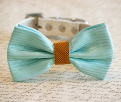 Tiffany Blue and Gold Wedding Dog Collar, Tiffany Blue Pet wedding accessory, Tiffany Blue Dog Bow tie, Tiffany Blue and Gold Wedding - LA Dog Store  - 1