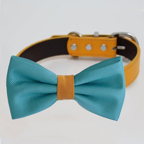 Scuba blue Orange bow tie collar, handmade Puppy bow tie, XS to XXL collar and bow adjustable dog of honor ring bearer, Blue bow tie , Wedding dog collar
