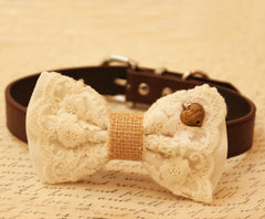 White Dog Bow Tie, Bow attached to brown dog collar, Pet wedding accessory, Lace bow tie, Charm,Sister always, gift, wedding,Rustic, Country - LA Dog Store  - 1