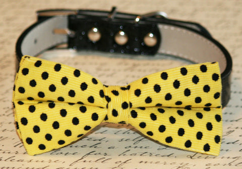 Yellow Black Polka dots Bow Tie attach to collar, Chic Wedding, Pet lovers