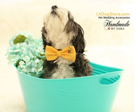 Yellow Dog Bow tie attached to collar, beach, Dog birthday, Pet wedding accessory