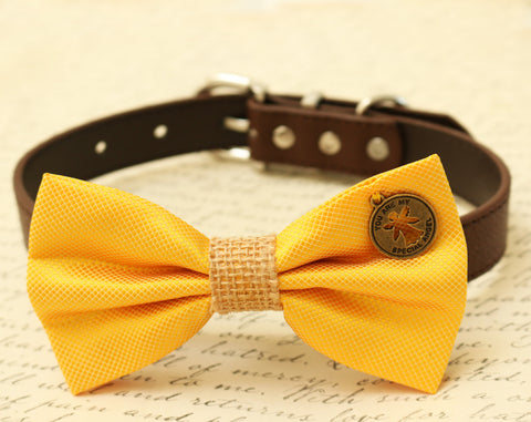 Yellow Dog Bow Tie attached to collar, Pet wedding, Cat Bow tie