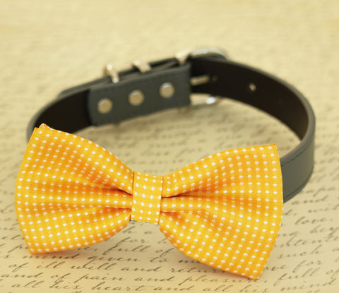 Yellow dog bow tie attached to collar, dog lovers, birthday, beach wedding , Wedding dog collar