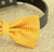 Yellow dog bow tie collar, bow attached to dog collar, dog lovers, dog birthday gift, beach wedding, yellow bow tie, Polka dots, dog collar - LA Dog Store  - 2