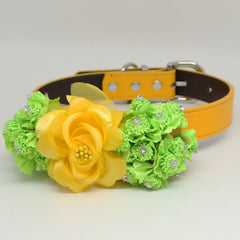 Sunny Yellow Green flower Dog Collar, Yellow leather dog collar, Green
