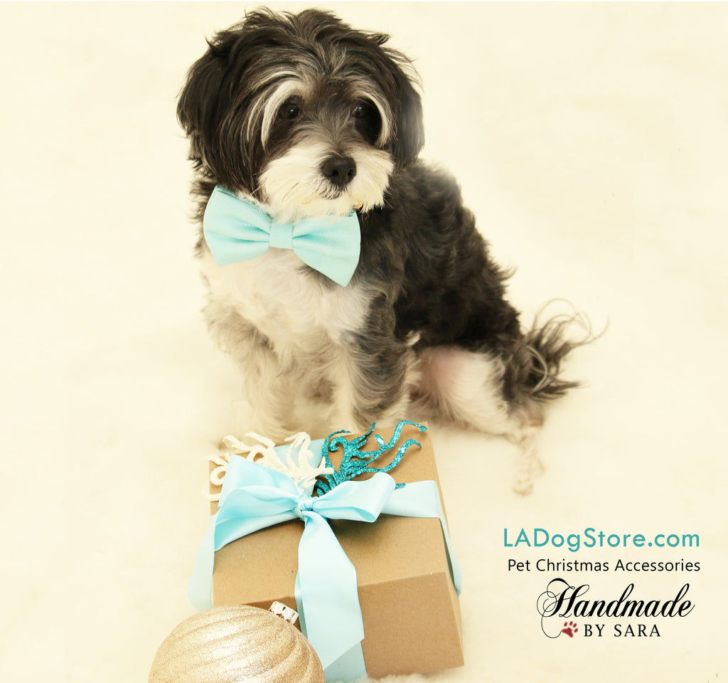 Blue Dog Bow Tie Collar Pet Accessory Something