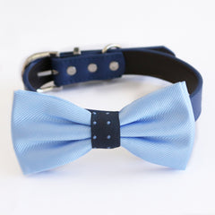 Blue bow tie collar dog of honor dog ring bearer XS to XXL collar and bow tie, Puppy bow tie leather adjustable dog collar