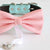 Blush bow tie collar Leather collar dog of honor ring bearer adjustable handmade XS to XXL collar and bow, Puppy bow collar