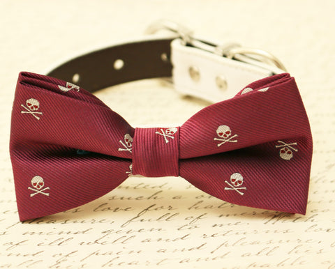 Burgundy Skull dog bow tie attached to collar, Halloween pet accessory