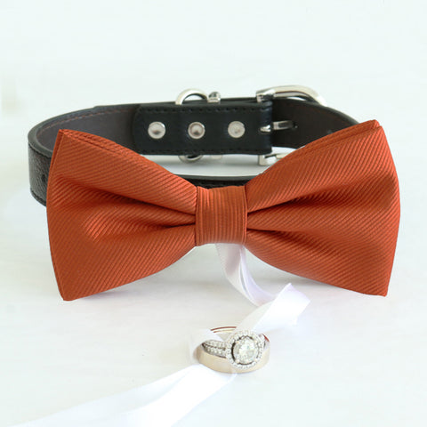 Cinnamon bow tie collar Leather collar dog of honor ring bearer adjustable handmade XS to XXL collar and bow, Puppy bow collar, Proposal , Wedding dog collar
