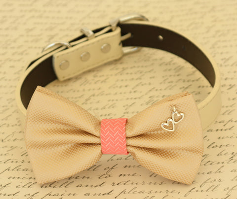 Champagne and coral dog Bow tie attached to dog collar, Pet accessory, Charm , Wedding dog collar