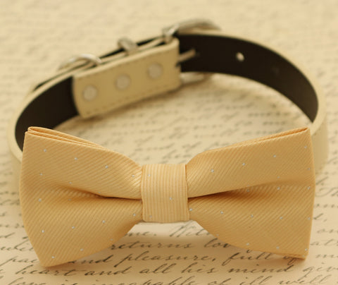 Champagne dog bow tie, Bow attached to dog collar, Pet wedding accessory